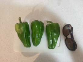 bell peppers as big as my sunglasses!